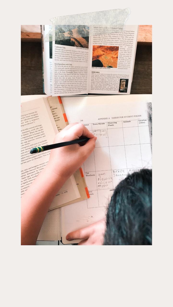 The Homeschool Edit